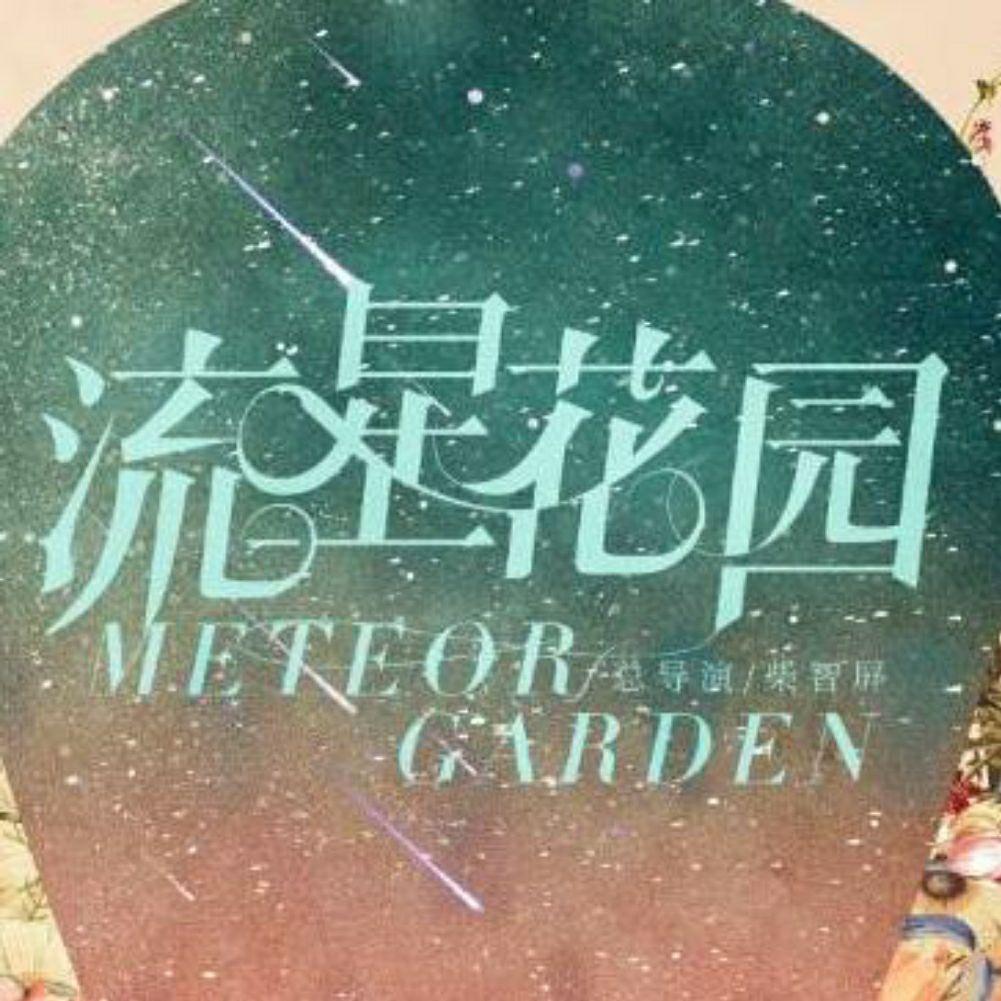电视剧流星花园