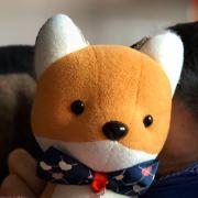 伏见稻荷小狐狸