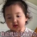天线宝宝花微博照片