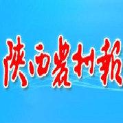 陕西农村报