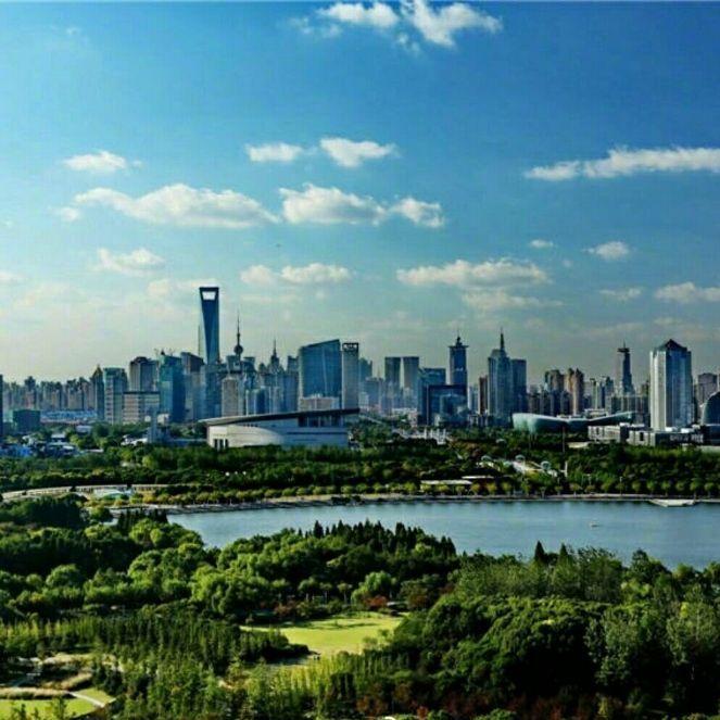 上海微新闻