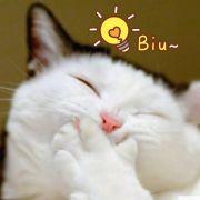 爆炒柚子猫H微博照片