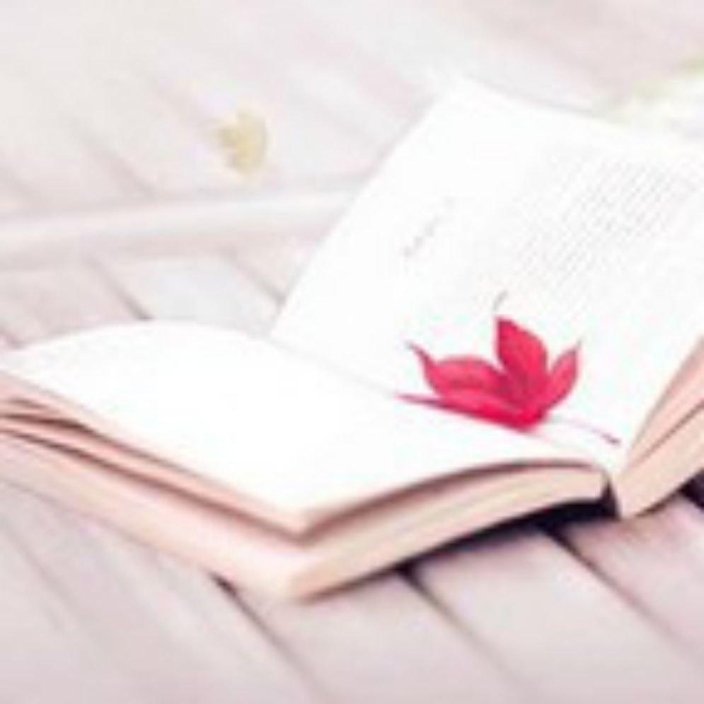 专注于文化读书类,细品阅读。