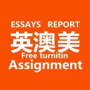 澳洲英国美国论文作业essay代写