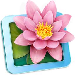 LilyView 1.4.1 破解版 – 轻量级图片浏览工具