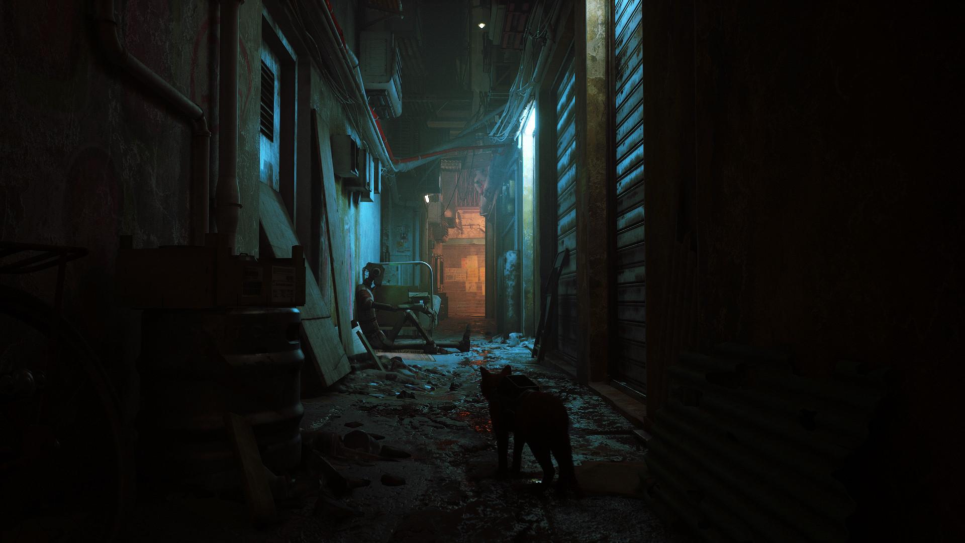 第三人称猫咪冒险游戏《迷失(Stray)》将于登陆PS5/Steam BlueTwelve Studio 游戏资讯 第2张