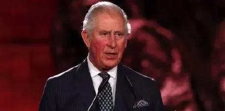 迷惑行为查尔斯王子的图片 第1张