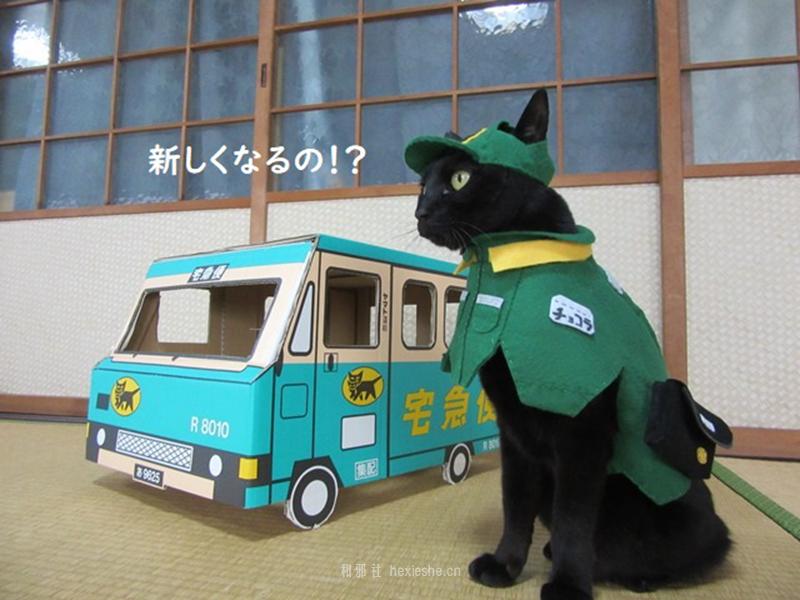 日本黑猫动画角色COS_和邪社04
