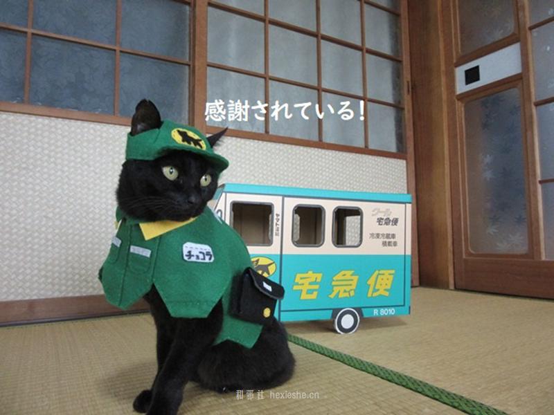 日本黑猫动画角色COS_和邪社06