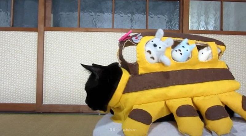 日本黑猫动画角色COS_和邪社12