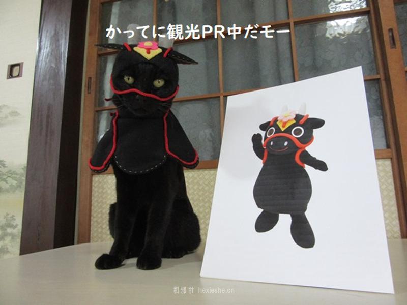 日本黑猫动画角色COS_和邪社17