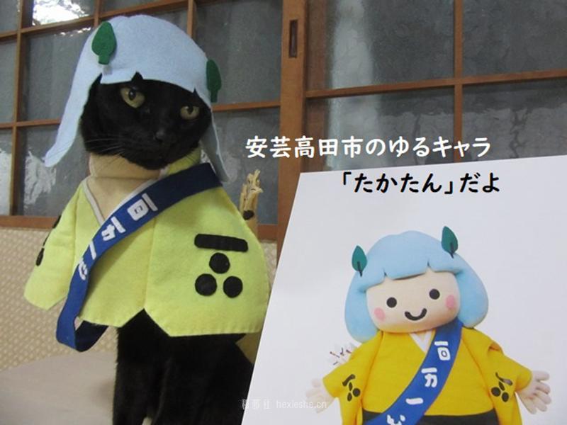 日本黑猫动画角色COS_和邪社18