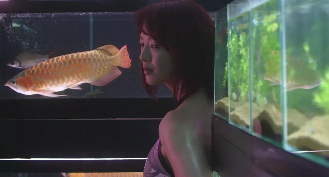 压抑至极的电影《冰冷的热带鱼》让你明白世界有多么肮脏