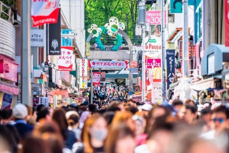 盘点日本旅行一年四季最佳时间避免堵在路上遇到囧途 (5)