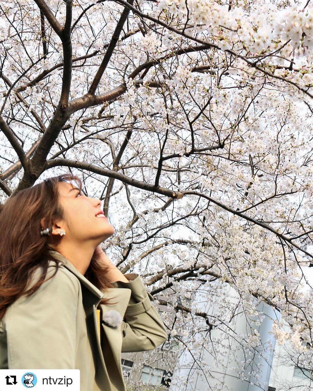 甜美无比的天气女郎贵岛明日香写真作品 (12)