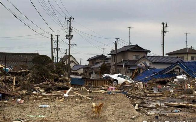 日本又发7级地震,日本地震频发的根本原因是什么 (2)