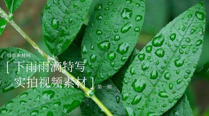 下雨雨滴素材视频合集下载(一)