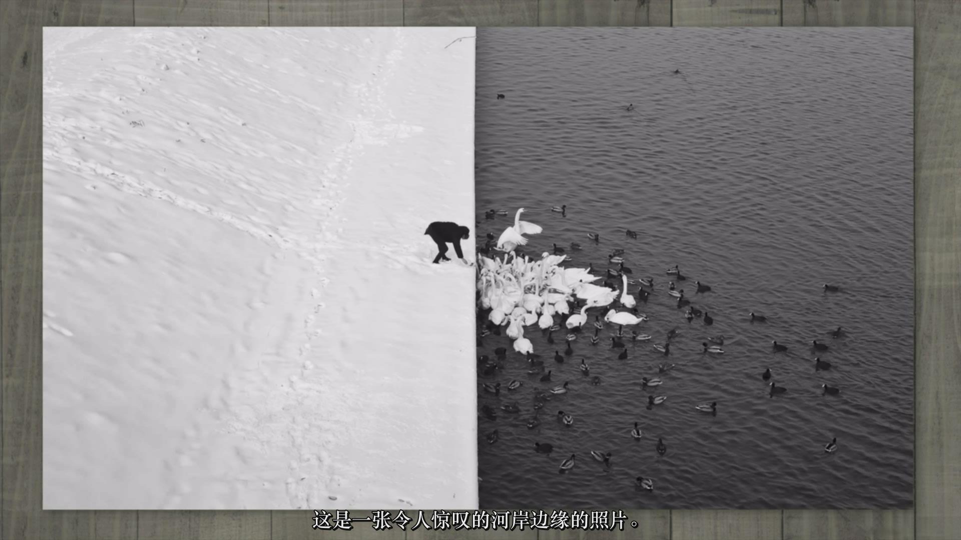 """摄影教程_Frank Minghella-""""完美照片构图""""将您摄影技术提高到一个新水平-中文字幕 摄影教程 _预览图7"""