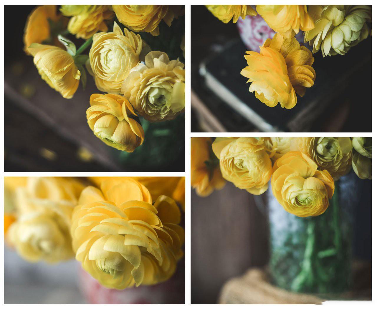 摄影教程_Lenslab –静物花卉产品摄影掌握色彩突破艺术界限研讨会-中文字幕 摄影教程 _预览图3