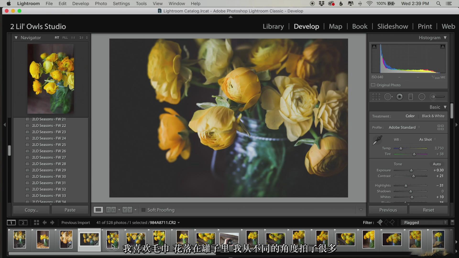 摄影教程_Lenslab –静物花卉产品摄影掌握色彩突破艺术界限研讨会-中文字幕 摄影教程 _预览图30