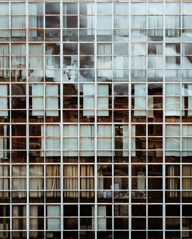 pexels-thiago-matos-2335275