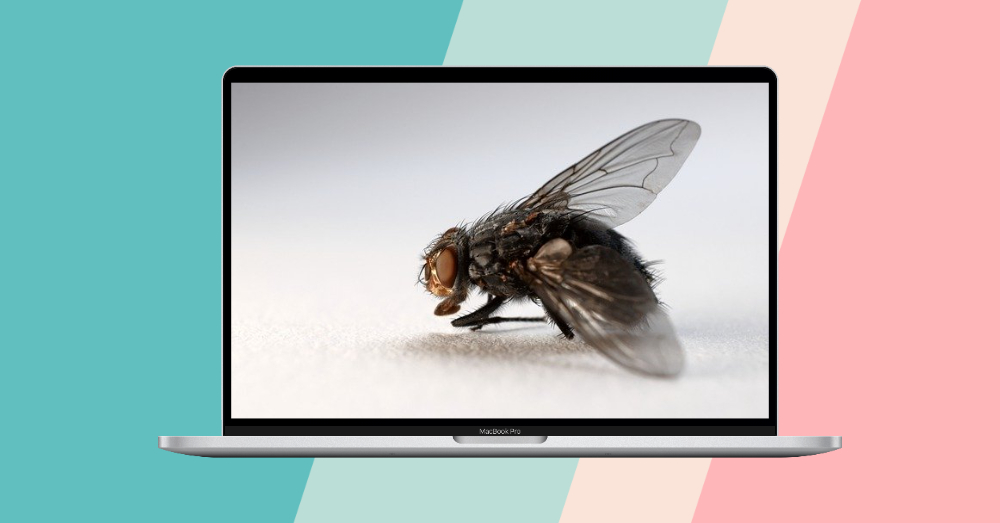 Designify – 免费去背景且自动帮你设计合成图像