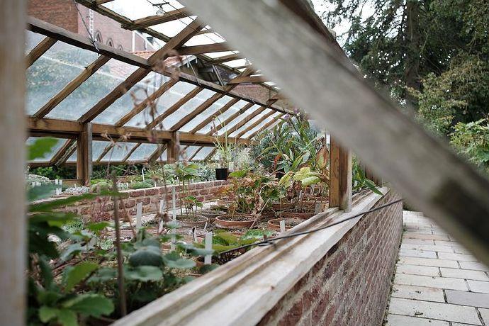 greenhouse-6577750__480
