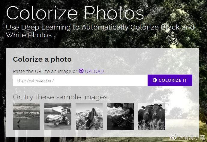 我们用莫妮卡贝卢奇黑白照片来看一下Colorize Photos 着色器怎么样 技术控 第1张