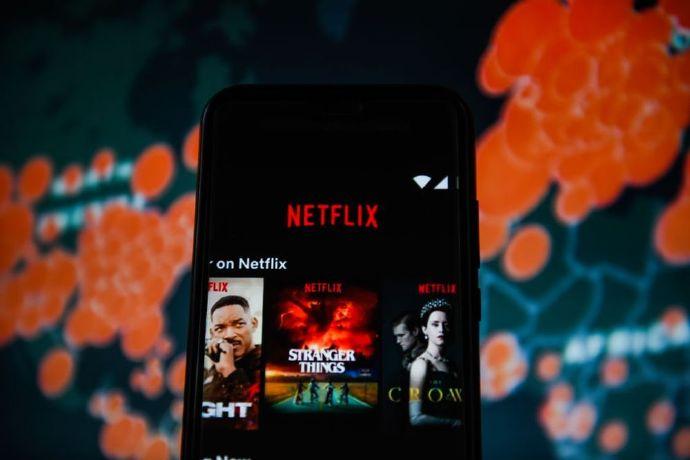 Netflix 奈飞 付费用户