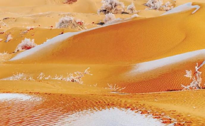 塔克拉玛干沙漠雾凇奇观