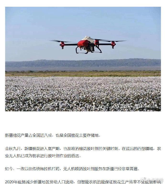 新疆雪白的棉花背后涉及的事情